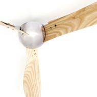 Wing Fan